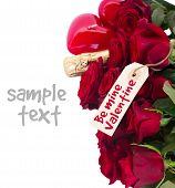 image of red-necked  - Valentine - JPG