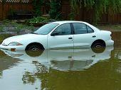 Постер, плакат: Автомобиль застрял в наводнение