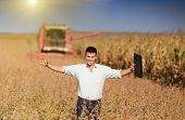 picture of soybeans  - Happy young landowner with raised arms and laptop standing on soybean field during harvest - JPG