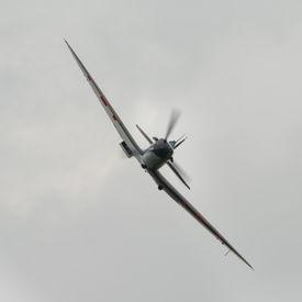 pic of fighter plane  - Vintage British Supermarine Spitfire fighter plane head on view - JPG