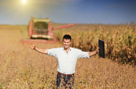 pic of soybeans  - Happy young landowner with raised arms and laptop standing on soybean field during harvest - JPG