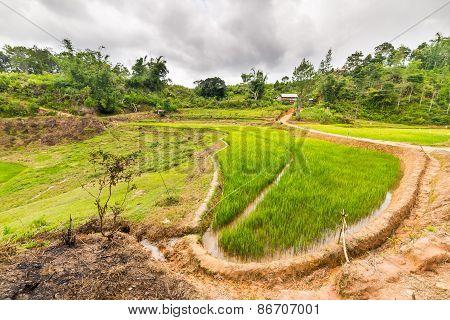 Toraja Landscape With Dramatic Sky