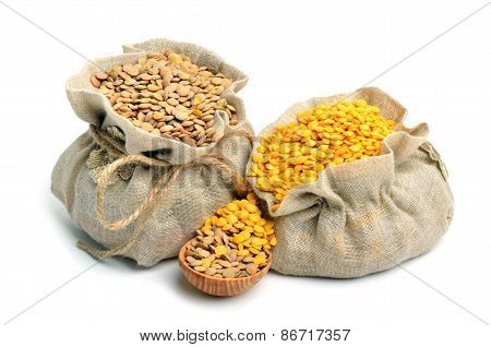 Green And Yellow Lentils In The Sacks Isolated On White