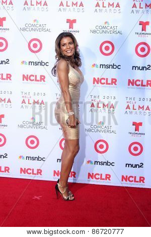 LOS ANGELES - SEP 27:  Lisa VIdal at the 2013 ALMA Awards - Arrivals at Pasadena Civic Auditorium on September 27, 2013 in Pasadena, CA