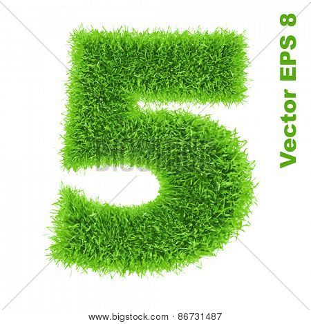 Digit symbol 5 of grass alphabet, vector illustration EPS 8.
