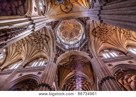 Stone Columns Dome Statues New Salamanca Cathedral Spain