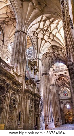 Stone Columns Stained Glass New Salamanca Cathedral Spain