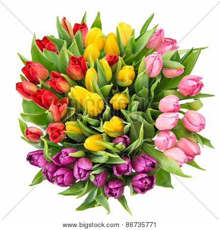 Bouquet Of Fresh Spring Tulip Flowers Isolated On White Background
