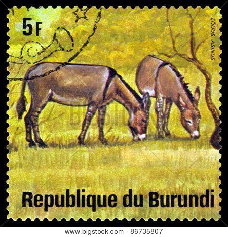 Vintage  Postage Stamp. African  Wild Asses. Animals Burundi.