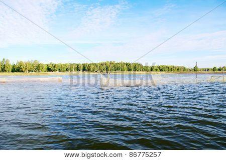 Lake With  Fishing Nets