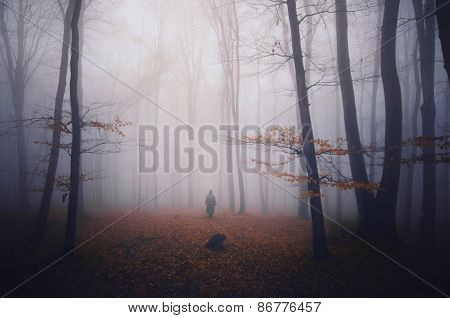 Ghost in haunted forest with fog