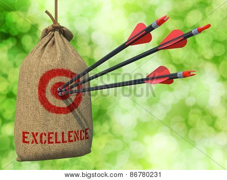 Excellence - Arrows Hit in Red Target.