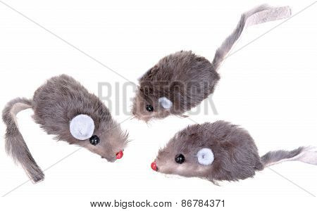 Cat Fishing Toy - Mouse on Rope with Pole  White Background .