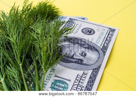 Greenery dill and one hundred dollars on yellow background, horizontal