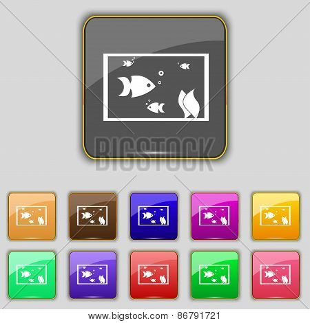Aquarium, Fish In Water Icon Sign. Set With Eleven Colored Buttons For Your Site. Vector