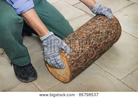 Master Holds In His Hands Billet Of Logs