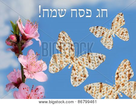 Spring Jewish Holiday Of Passover