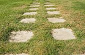 stock photo of paving stone  - Paving stone garden footpath going across grass - JPG