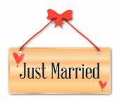 picture of plaque  - A just married plaque in woodgrain with red ribbon and bow over a white background with love cartoon hearts - JPG