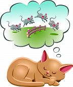 image of counting sheep  - A cat counting the sheep to fall asleep - JPG