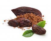 image of cocoa beans  - Cacao beans and powder isolated on white background - JPG