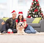 foto of dog christmas  - Young couple celebrating Christmas with their dog seated on the floor next to a modern gray sofa at their home - JPG
