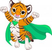 picture of cute tiger  - 