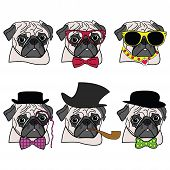 image of bow tie hair  - Pugs hipsters presented with vary accessories  - JPG