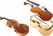 image of violin  - Vector illustration of violin in complete and violin in parts that fits - JPG
