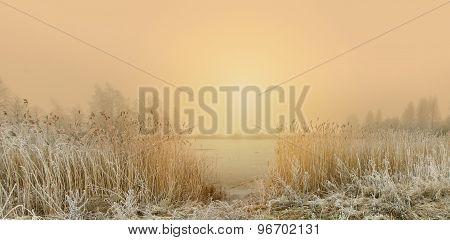 Winter Morning At The Lake