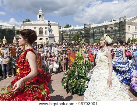 PAVLOVSK, RUSSIA - JULY 18, 2015: Photo of Flower shows. Festival