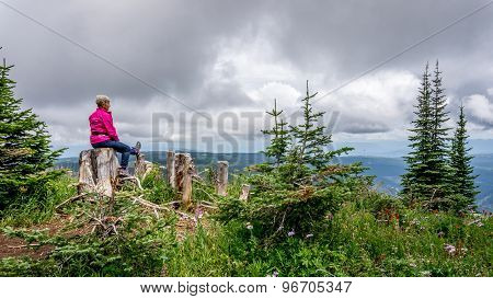 Woman Taking A Rest On A Tree Stump During A Hike