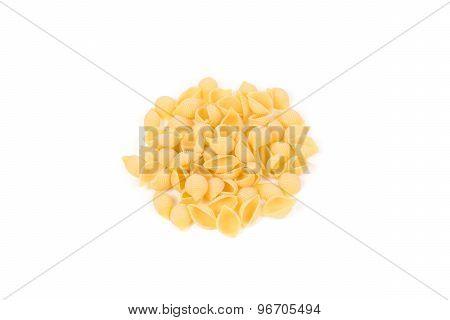 Conchiglie Pasta Shell