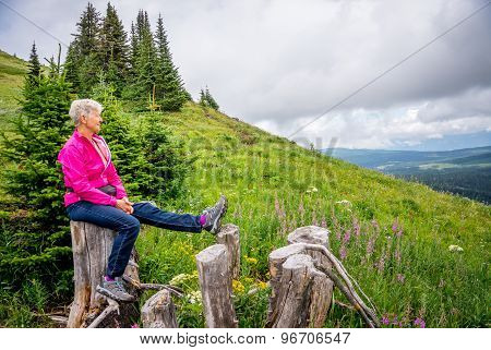 Woman Taking a Rest on a Tree Stump