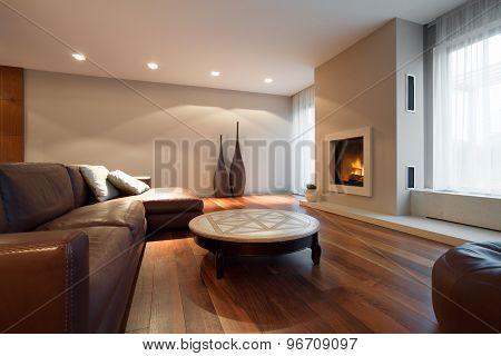 Leather Comfortable Sofa