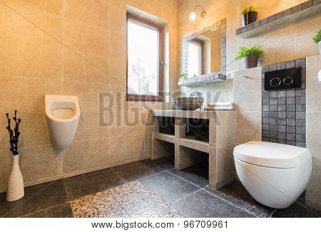 Urinal In Modern Toilet