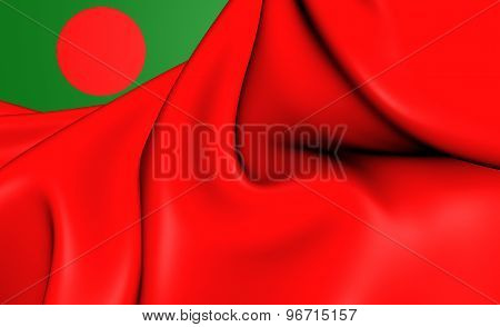 Civil Ensign Of Bangladesh
