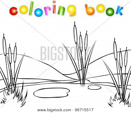 Swamp Coloring Book