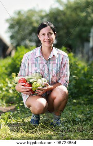 harvested vegetables