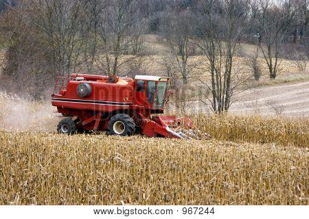 Working Corn Combine