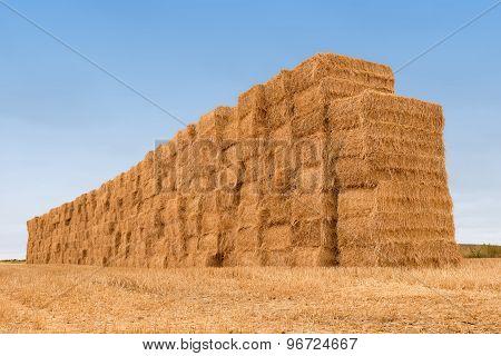 many balestraw stacked