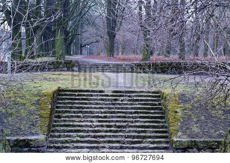 stone stairs in the park
