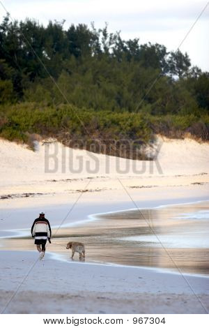 Walking with a dog on a deserted beach