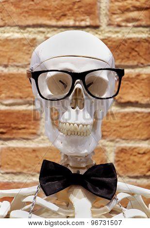 Skeleton Fashion