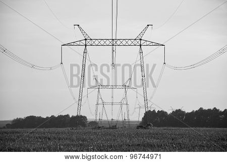 Power line in the field