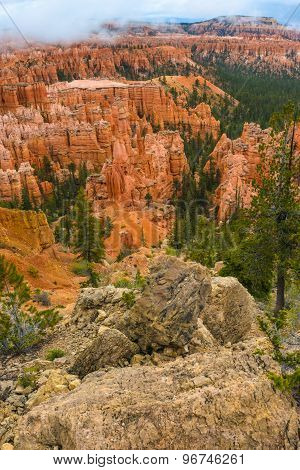 Bryce Canyon Landscape Vertical