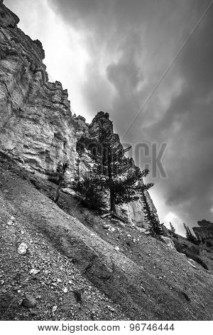 Bryce Canyon Black And White Photography
