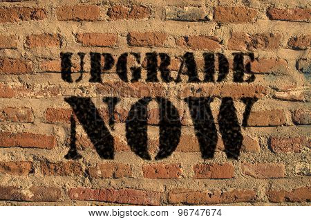 Upgrade now  written over brick wall