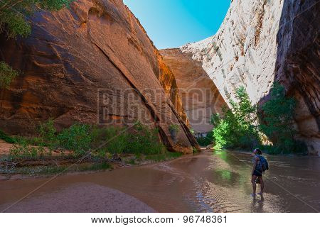 Girl Backpacker Hiking Coyote Gulch Escalante