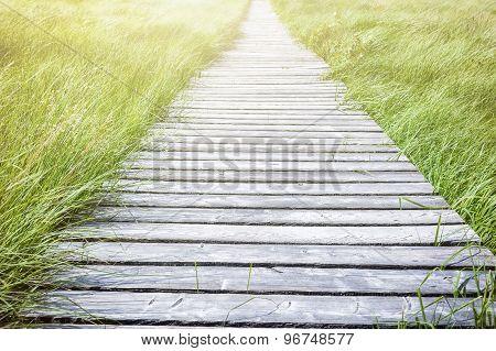 Wooden Plank Board Walkway